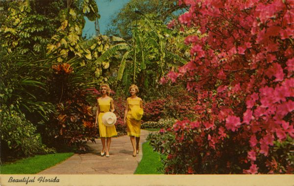 Old Florida Attractions You can Still visit Sunken Gardens